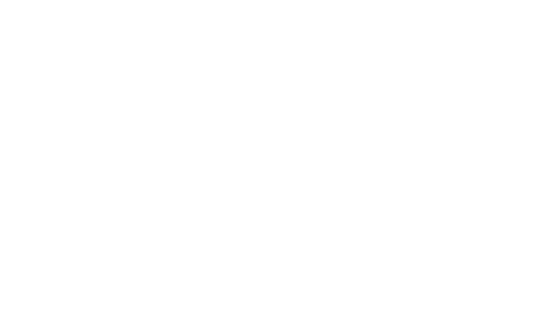 T.H.E Best Butchers Logo